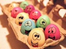 Huevos a la japonesa comprados en eBay la tienda de paco